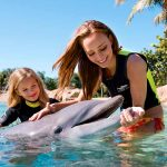 Discovery Cove mom