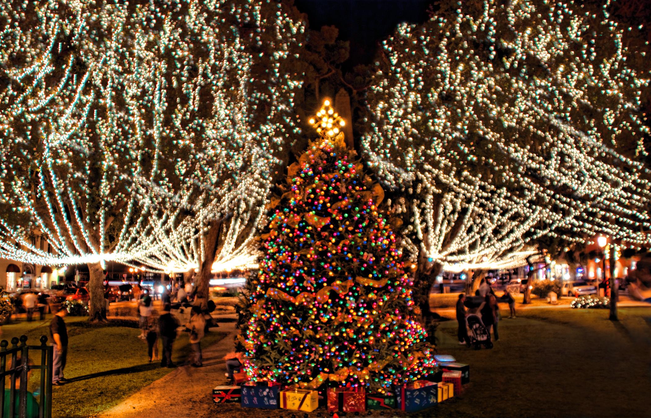 Nights of Lights tree