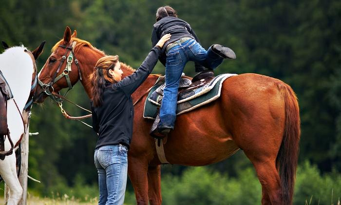 Equestrian Quest