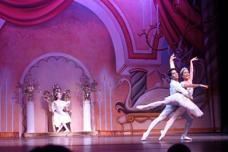 Palm Coast Ballet
