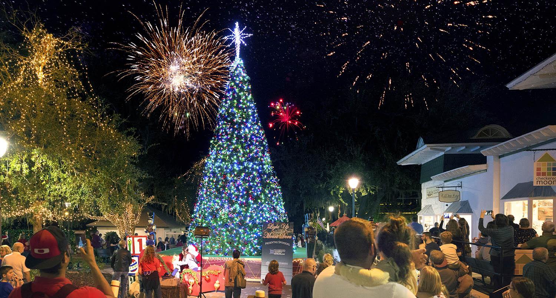 Lake County Christmas Tree