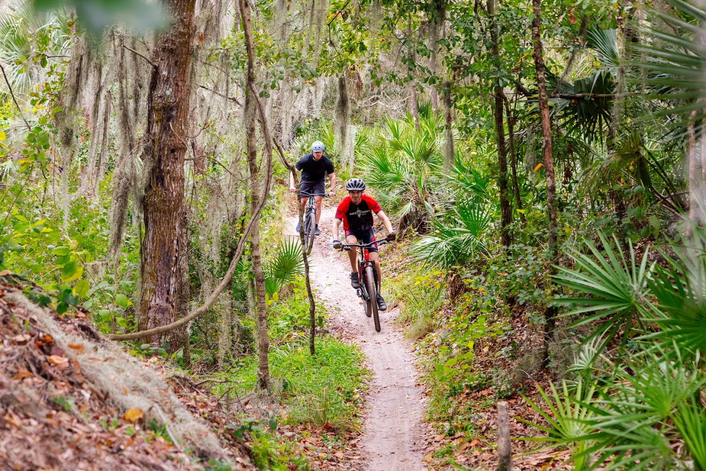 Tampa Bike Trails