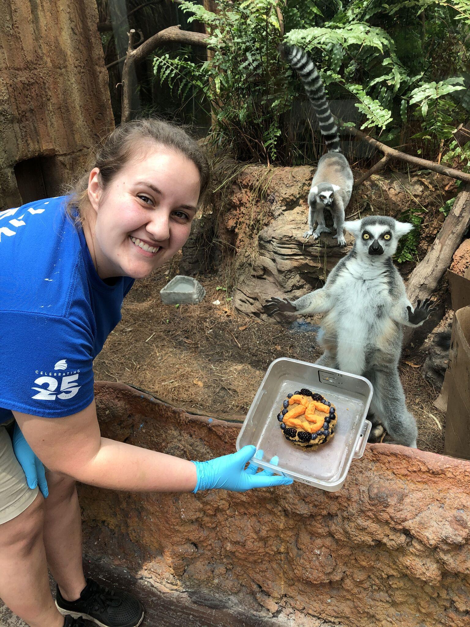 Lemurs celebrate