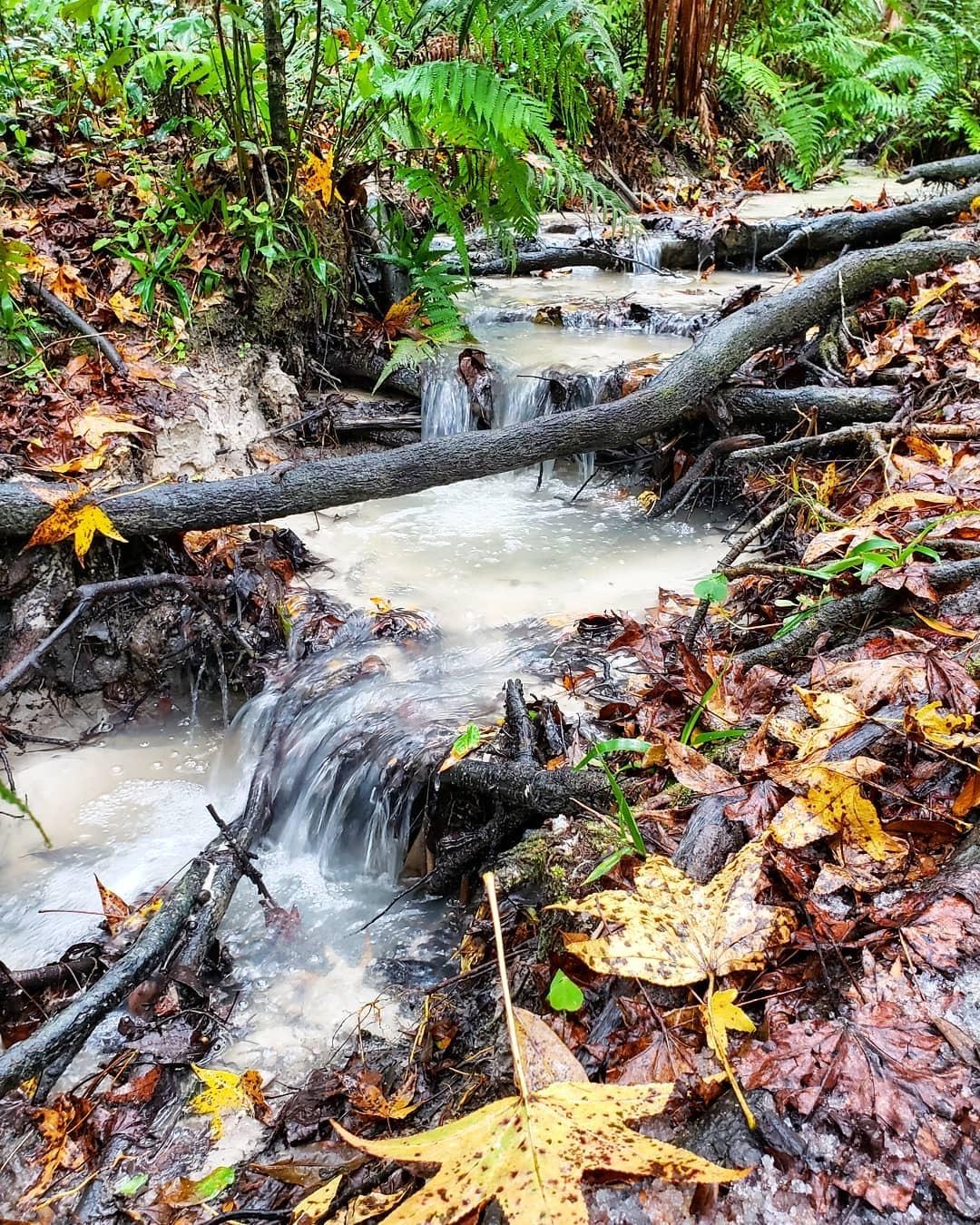 Hidden Waters