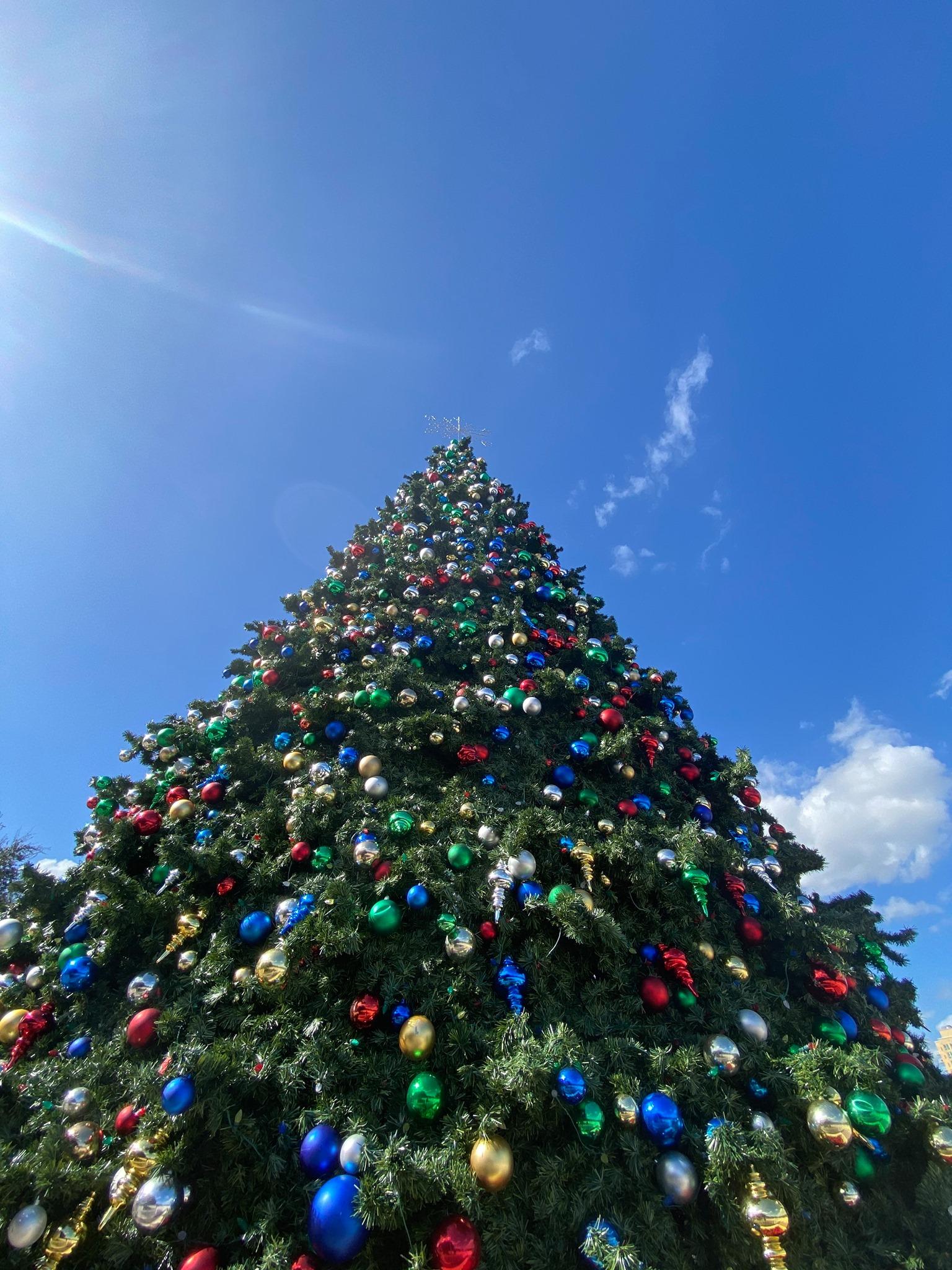 Orlando North Christmas