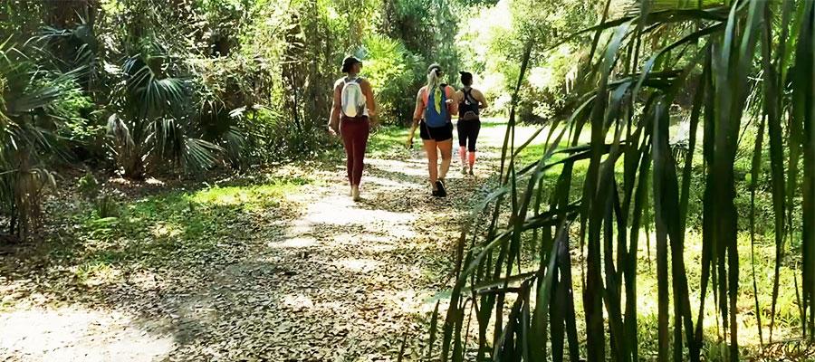 Seminole Trail