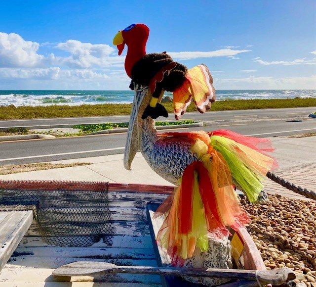 Pete the pelican