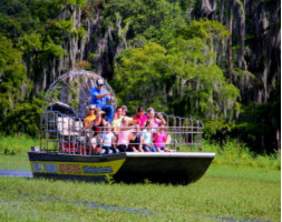 Wild Florida Half Day Adventure Package including Lunch