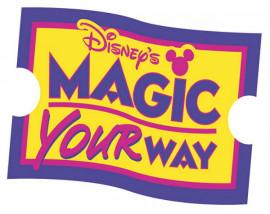Disney 2 Day Tickets