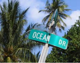 Miami & Everglades Adventure