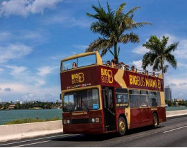Miami One Day Tour with Hop On Hop Off City Tour
