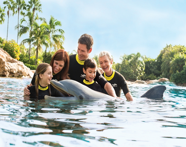 Discovery Cove Dolphin Swim Package