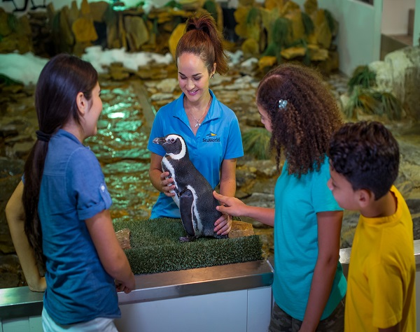 SeaWorld® VIP Ultimate Tour