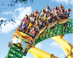 Busch Gardens Single Day Ticket
