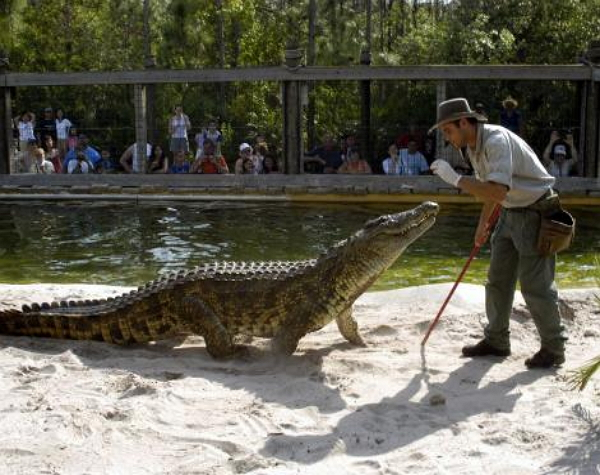 Gatorland Admission Special Offer 2018