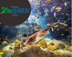 Tampa's ZooQuarium Ticket
