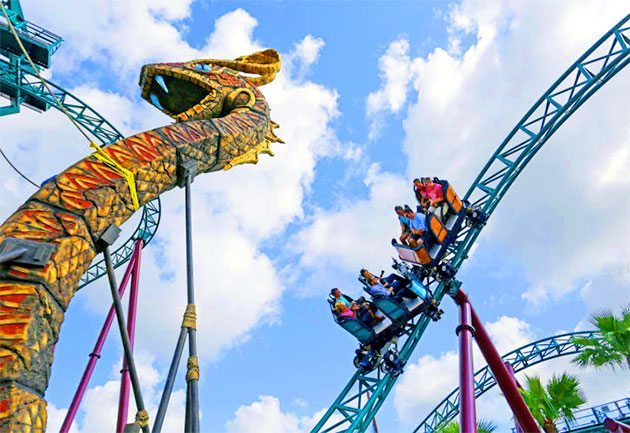 Busch Gardens Tampa Bay Enjoy Animal Encounters And