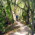 Cycling Loyce Harpe Park Trail