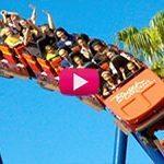 Busch Gardens Is Wild