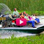 Experience Wild Florida