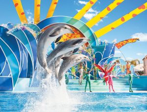 Dolphin Days Replaces Blue Horizons