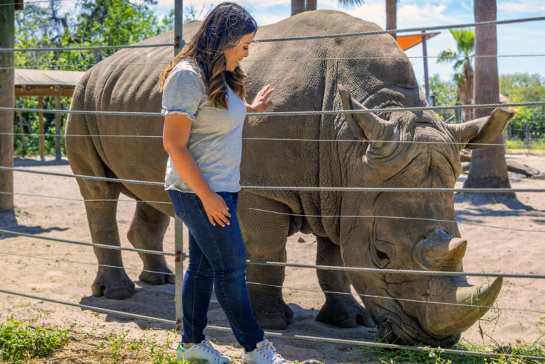 Tampa Zoo rhino encounter